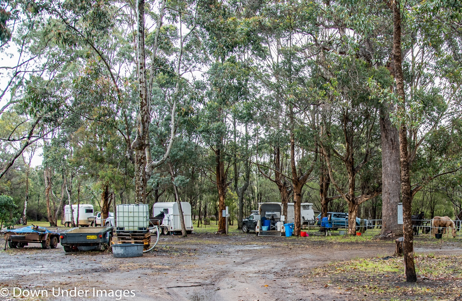 Boat Harbour Camp Nov 1-2  2019